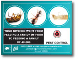 pest control services direct mail postcards